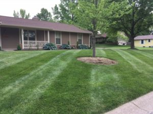 St. Peters Lawn Care