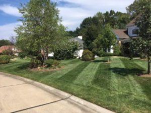 Lake St. Louis lawn mowing