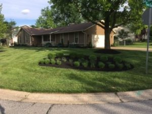 St,. Peters Landscaping